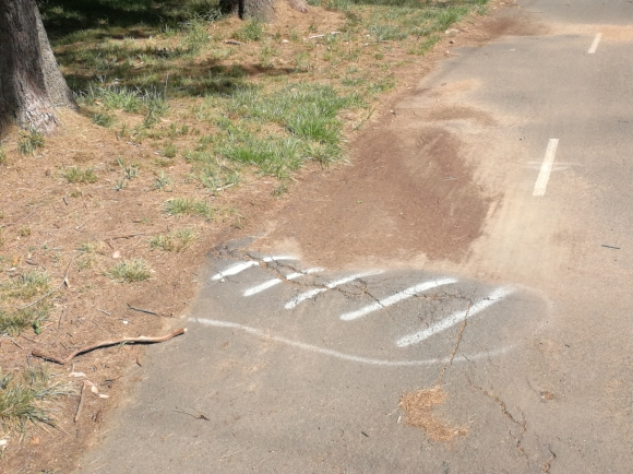 Safety and hazards on CBR Cycle Route C5, Aranda bike path, Belconnen, Canberra