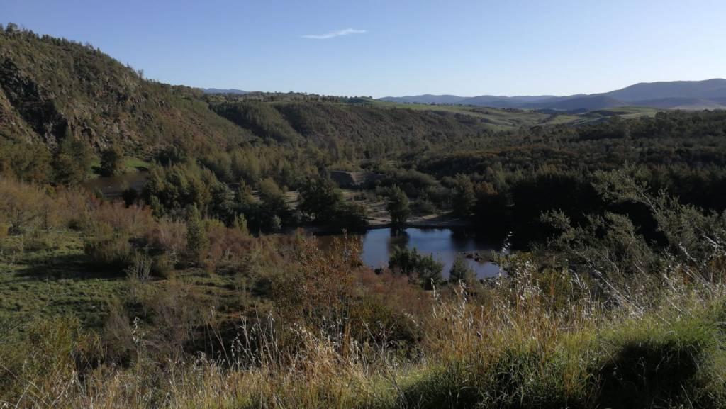 Woodstock Nature Reserve, Murrumbidgee River Corridor, north of Stockdill Drive, West Belconnen