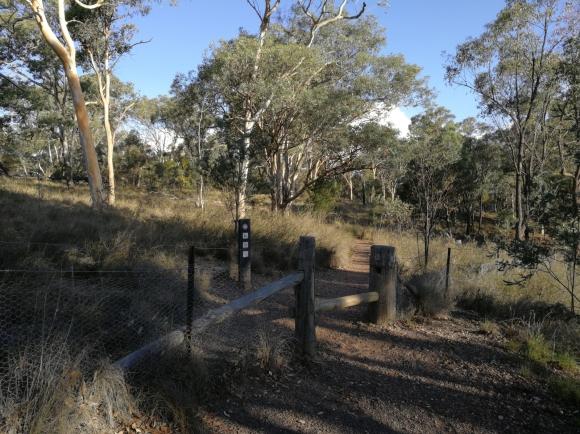 Walking track, Aranda Nature Reserve, Aranda hill, Canberra.