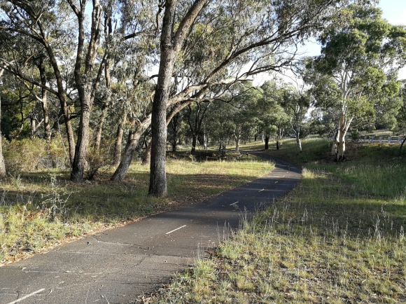 CBR Cycle Route C5, Aranda Nature Reserve, Aranda hill, Canberra.