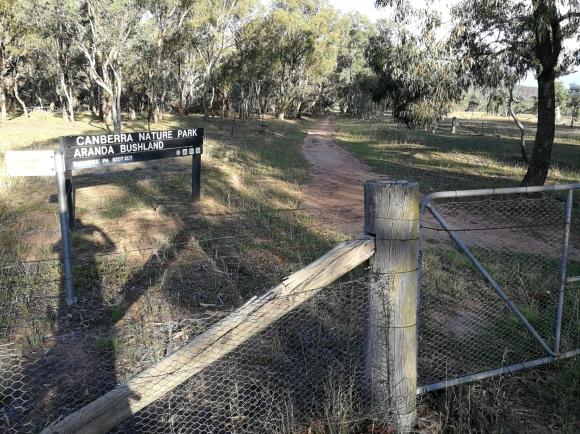 Centenary Trail, maintenance trail, Aranda Nature Reserve, Aranda hill, Canberra.