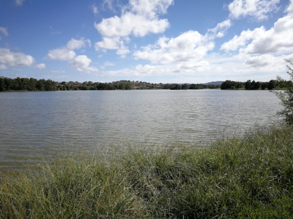 Gungahlin Pond looking north-west, Gungahlin, Canberra
