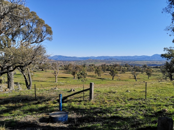 Brindabella Ranges, Dowling Track, The Pinnacle Nature Reserve, Hawker, Belconnen