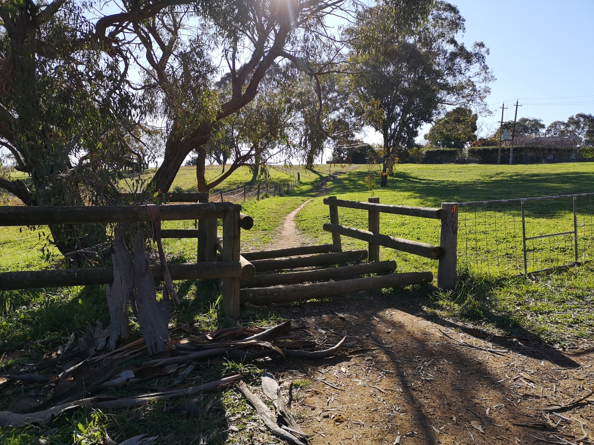Horse style, Bicentennial National Trail, Springvale Track, Hawker, Belconnen