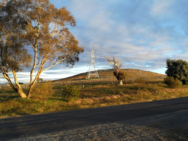 Vineyard and power lines, Stockdill Drive, West Belconnen, Canberra