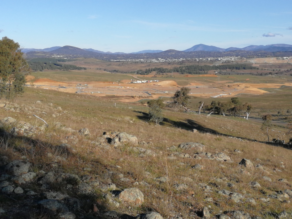Whitlam from the west boundary fence, The Pinnacle Offset Area, The Pinnacle, Belconnen