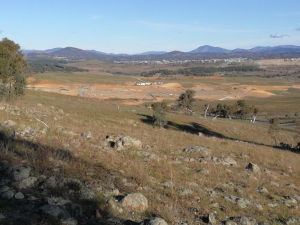 Whitlam from the east boundary fence, The Pinnacle Offset Area, The Pinnacle, Belconnen