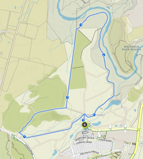Denman Prospect Forest loop, Molonglo Valley, starting and ending at the shops. Map Komoot. Map data © OpenStreetMap contributors.