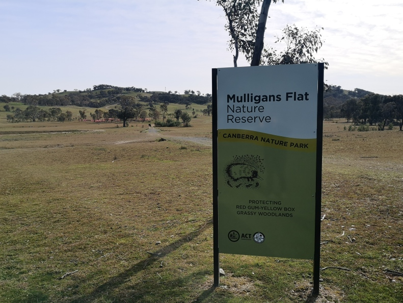 Mulligans Flat, Forde, Gungahlin