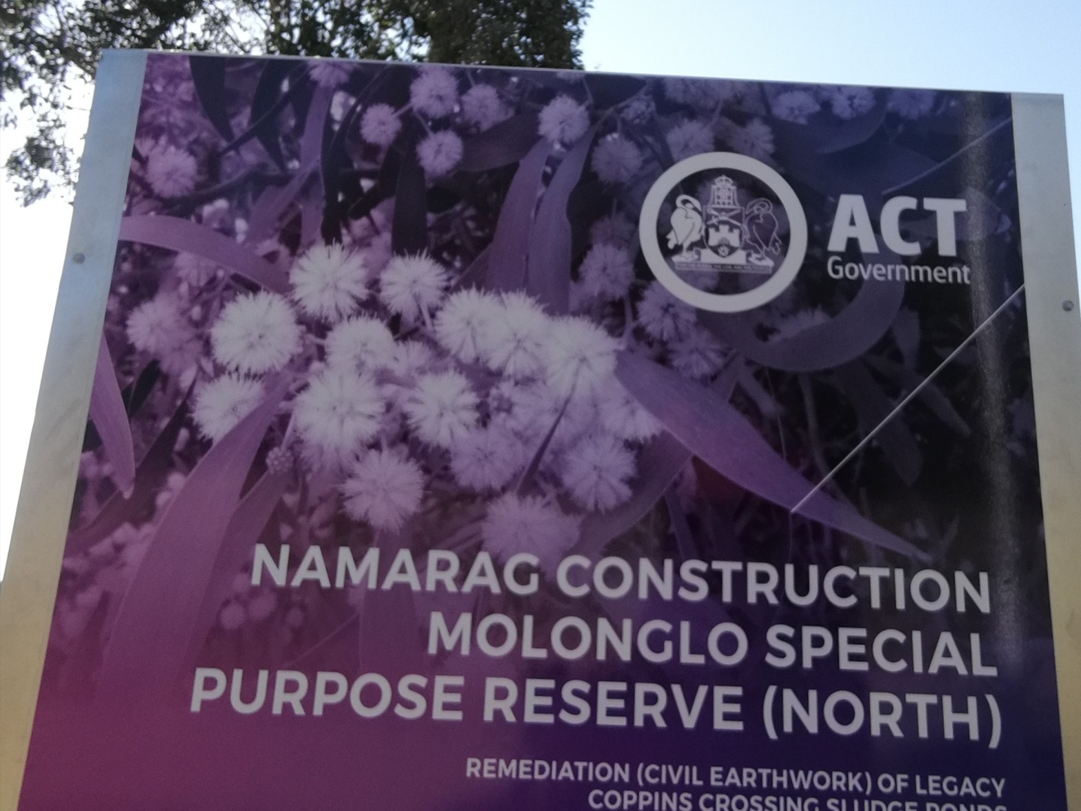 Namarag Molonglo Special Purpose Reserve
