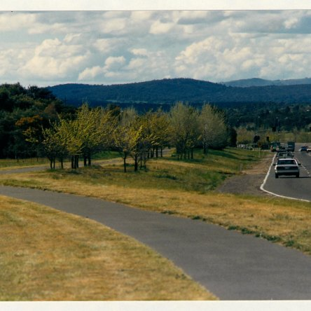 Athllon Drive cycleway looking north from Beazley Street. c1989