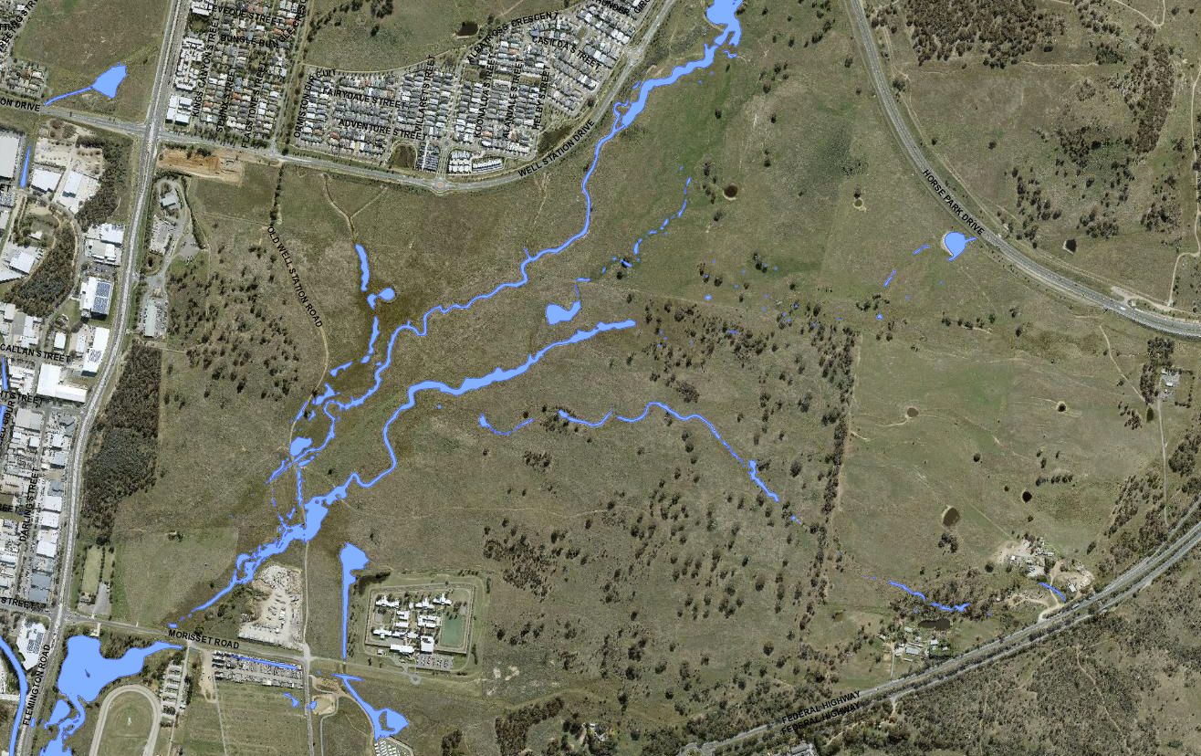 New Kenny suburb flood areas. Map: ACT Flood Map, ACTmapi, accessed 31 August 2021.